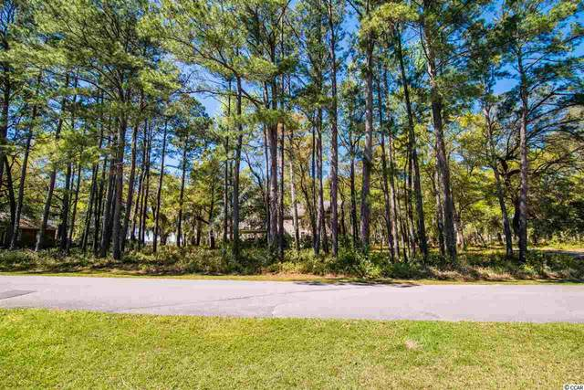 lot A Tuckers Rd., Pawleys Island, SC 29585 (MLS #2104675) :: The Litchfield Company