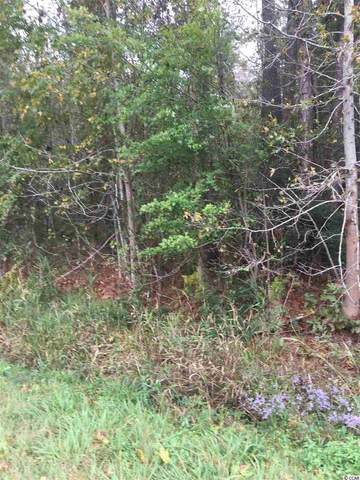 182 Booth Circle, Conway, SC 29527 (MLS #2104716) :: James W. Smith Real Estate Co.