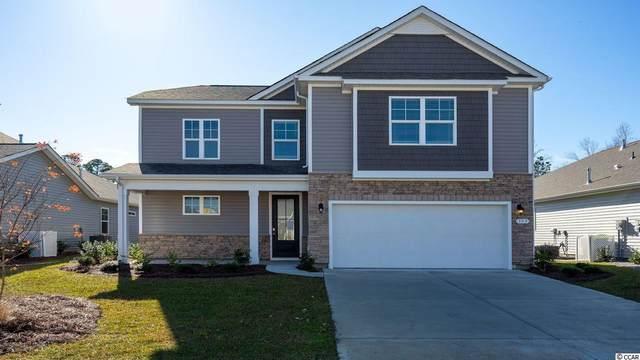 462 Mcalister Dr., Little River, SC 29566 (MLS #2104723) :: Duncan Group Properties