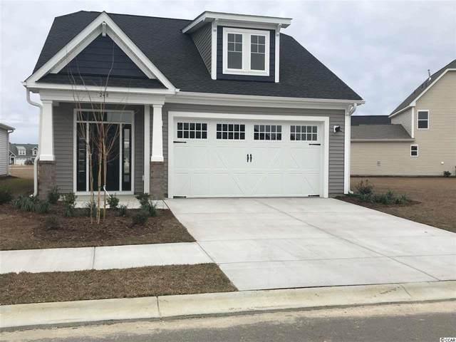 248 Goldenrod Circle, Little River, SC 29566 (MLS #2104789) :: Duncan Group Properties