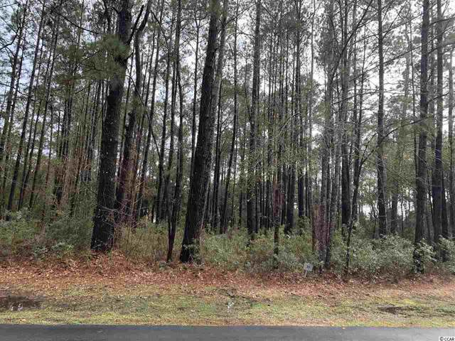 Lot 95 Brandon Way, Georgetown, SC 29440 (MLS #2104876) :: Team Amanda & Co