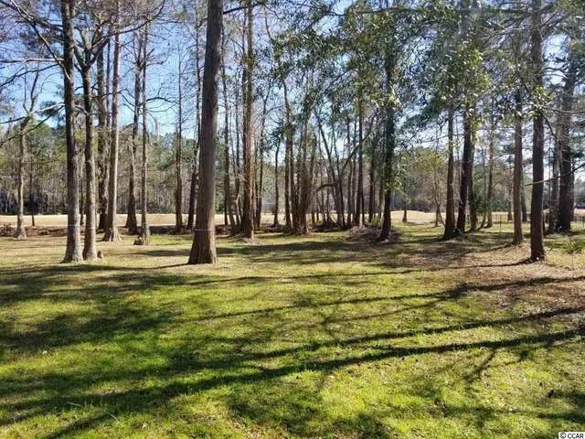 46 Hamilton Trail, Pawleys Island, SC 29585 (MLS #2105079) :: Armand R Roux | Real Estate Buy The Coast LLC