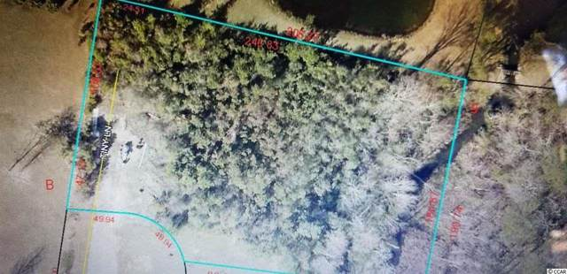 TBD Tiny Ln., Pawleys Island, SC 29585 (MLS #2105283) :: Jerry Pinkas Real Estate Experts, Inc