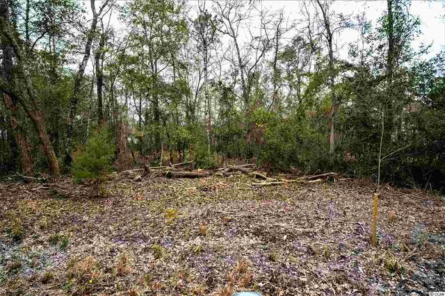 1595 Old Tram Rd., Little River, SC 29566 (MLS #2105314) :: The Hoffman Group