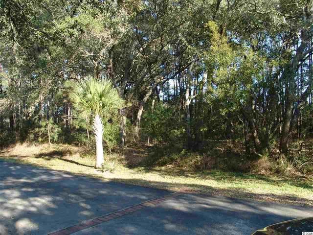 Lot 5 Royal Tern Ct., Georgetown, SC 29440 (MLS #2105475) :: James W. Smith Real Estate Co.