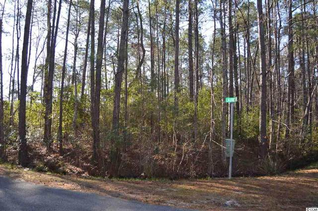 405 Laurel Ct., Calabash, NC 28467 (MLS #2105481) :: The Litchfield Company