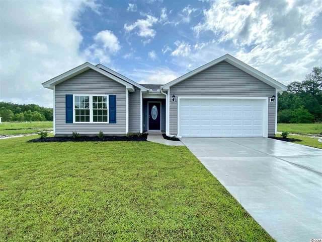 45 Desurrency Ct., Georgetown, SC 29440 (MLS #2105633) :: Armand R Roux | Real Estate Buy The Coast LLC