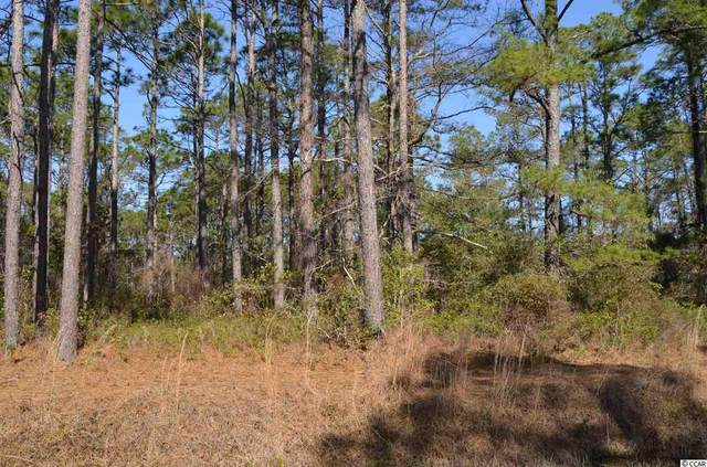 154 Boundaryline Dr. Nw, Calabash, NC 28467 (MLS #2105646) :: The Litchfield Company