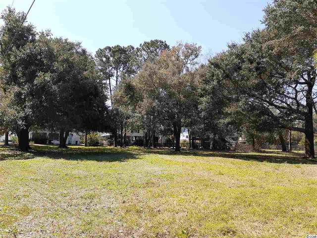 168 Sea Level Loop, Pawleys Island, SC 29585 (MLS #2105694) :: The Hoffman Group