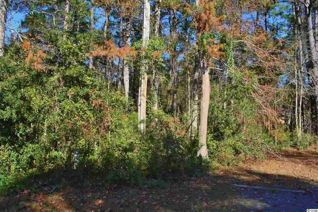 Lot 20 Hamilton Trail, Pawleys Island, SC 29585 (MLS #2105790) :: The Lachicotte Company