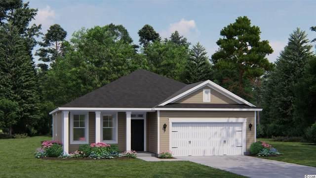 134 Caroline Ct., Murrells Inlet, SC 29576 (MLS #2105872) :: Duncan Group Properties