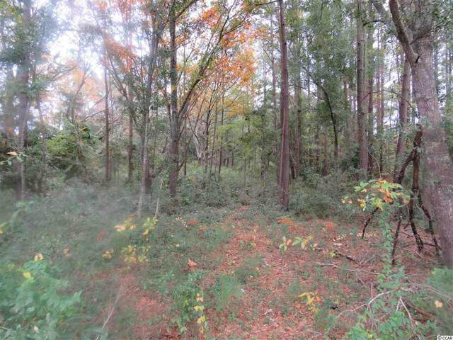 1258 Highway 17 North, Little River, SC 29566 (MLS #2106108) :: Armand R Roux | Real Estate Buy The Coast LLC