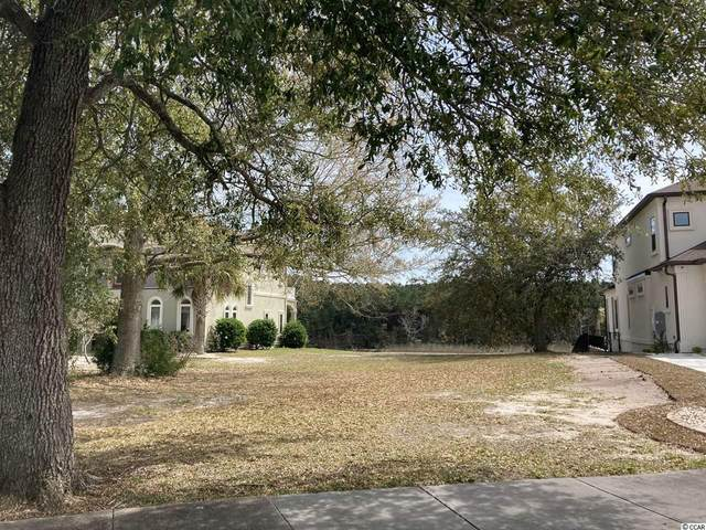 209 Avenue Of The Palms, Myrtle Beach, SC 29579 (MLS #2106446) :: Dunes Realty Sales