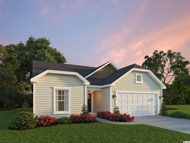 120 Hampton Park Circle, Myrtle Beach, SC 29588 (MLS #2106618) :: The Litchfield Company