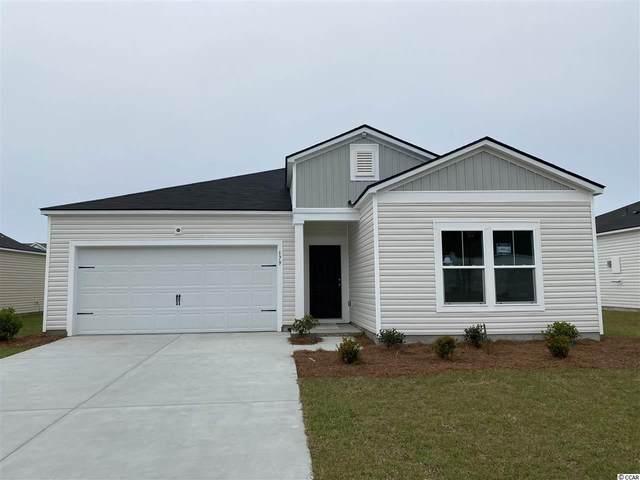 136 Marsh Deer Place, Surfside Beach, SC 29575 (MLS #2106740) :: Armand R Roux | Real Estate Buy The Coast LLC