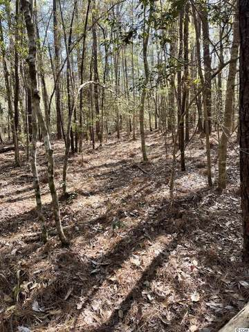 TBD Pitch Landing Rd., Conway, SC 29527 (MLS #2107441) :: The Litchfield Company