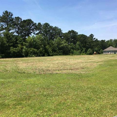 518 Mingo Trail, Johnsonville, SC 29555 (MLS #2107640) :: The Litchfield Company