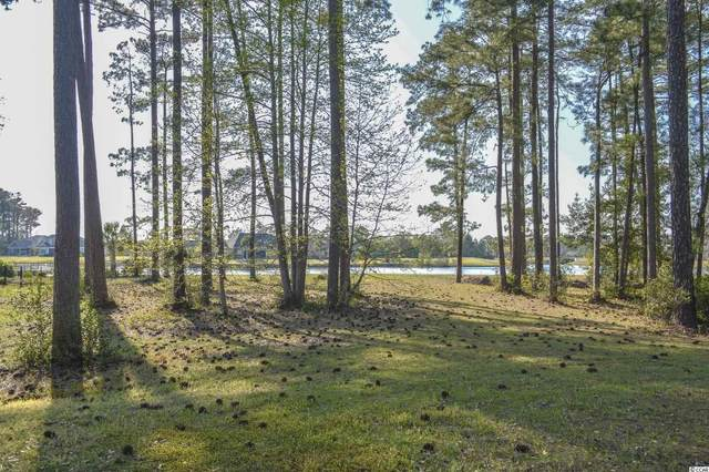 1435 Whooping Crane Dr., Conway, SC 29526 (MLS #2107665) :: Armand R Roux | Real Estate Buy The Coast LLC