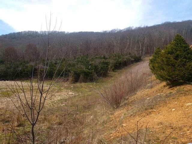 Edgar Tufts Rd., Banner Elk, NC 28604 (MLS #2107716) :: Coastal Tides Realty