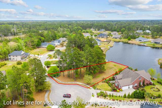 1033 Muscovy Pl., Conway, SC 29526 (MLS #2108045) :: Armand R Roux | Real Estate Buy The Coast LLC
