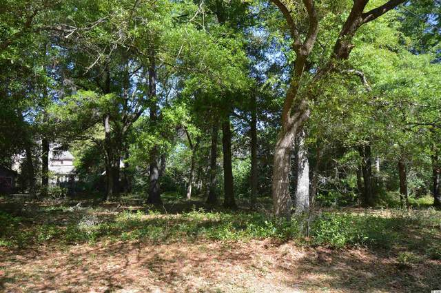 Lot 6 Emerson Loop, Pawleys Island, SC 29585 (MLS #2108093) :: The Lachicotte Company