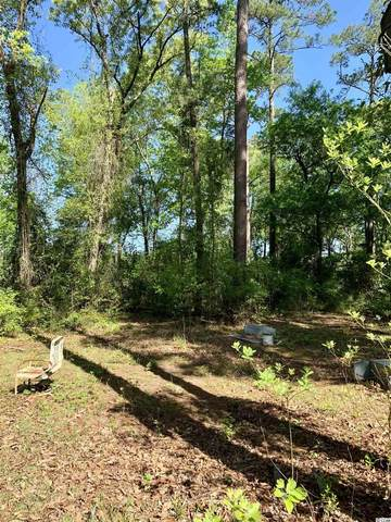 TBD Kings Rd., Conway, SC 29526 (MLS #2108199) :: Surfside Realty Company