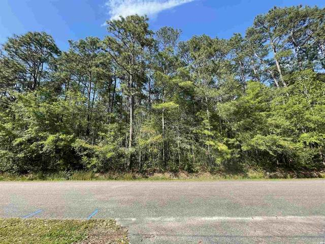 TBD Kings River Rd., Pawleys Island, SC 29585 (MLS #2108220) :: The Lachicotte Company