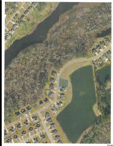 1141 Pecan Grove Blvd., Conway, SC 29527 (MLS #2108556) :: Coastal Tides Realty
