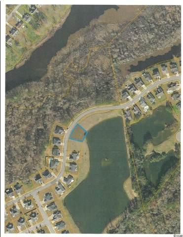 1137 Pecan Grove Blvd., Conway, SC 29527 (MLS #2108558) :: Coastal Tides Realty