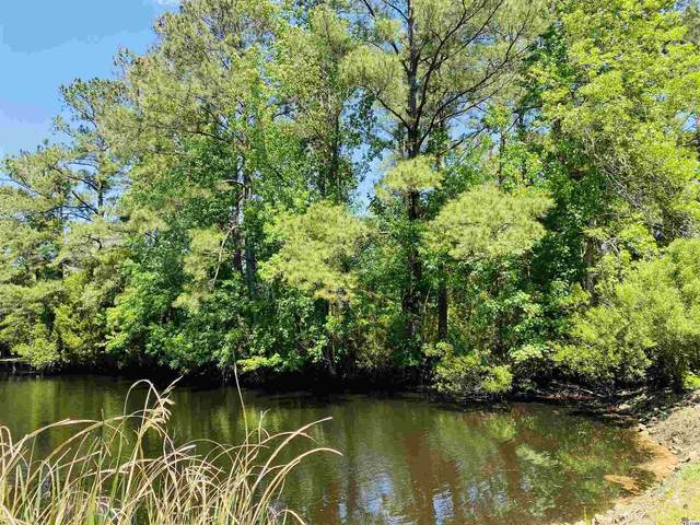 19 Ricefield Pl., Georgetown, SC 29440 (MLS #2108815) :: James W. Smith Real Estate Co.