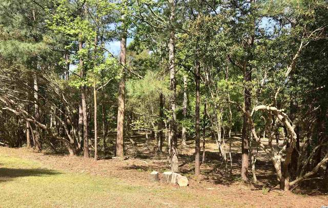 202 Brickwell Ln., Pawleys Island, SC 29585 (MLS #2108907) :: The Greg Sisson Team