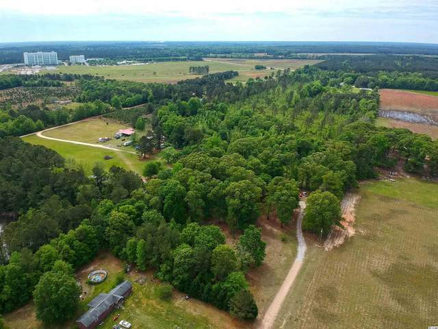 5894 E Old Marion Hwy., Florence, SC 29506 (MLS #2109303) :: Hawkeye Realty
