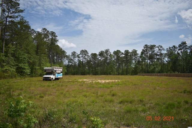 974 Wedgefield Rd., Georgetown, SC 29440 (MLS #2109717) :: The Litchfield Company