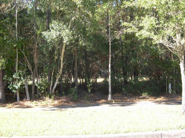 Lot 1066 Duany Dr., Georgetown, SC 29440 (MLS #2109805) :: Garden City Realty, Inc.