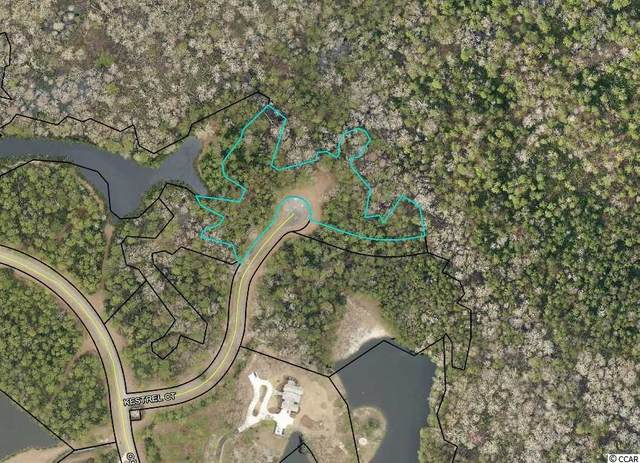 Lot 138 Canvasback Ln., Pawleys Island, SC 29585 (MLS #2109855) :: The Hoffman Group