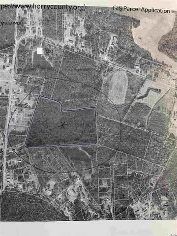 22.5 Acres Pint Circle, Longs, SC 29568 (MLS #2109863) :: Jerry Pinkas Real Estate Experts, Inc