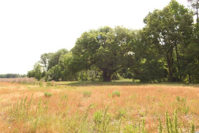 TBD Old River Rd., Pamplico, SC 29583 (MLS #2109871) :: Hawkeye Realty