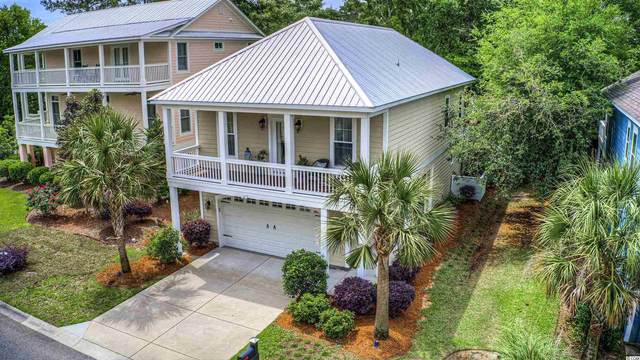226 Natures View Circle, Pawleys Island, SC 29585 (MLS #2109942) :: The Greg Sisson Team