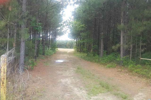 Blackwell Island Ct., Marion, SC 29571 (MLS #2109963) :: Garden City Realty, Inc.