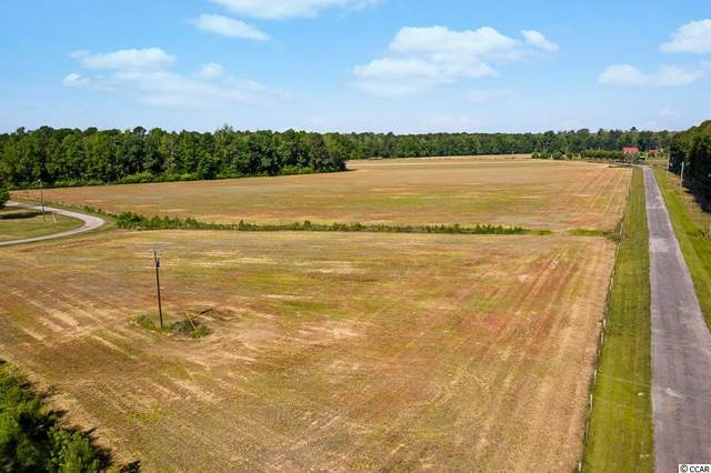 TBD T J Sod Ln., Conway, SC 29527 (MLS #2110946) :: Duncan Group Properties