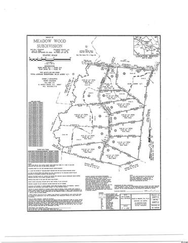 Lot # 11 Clemmons Dr., Tabor City, SC 28463 (MLS #2111283) :: Duncan Group Properties