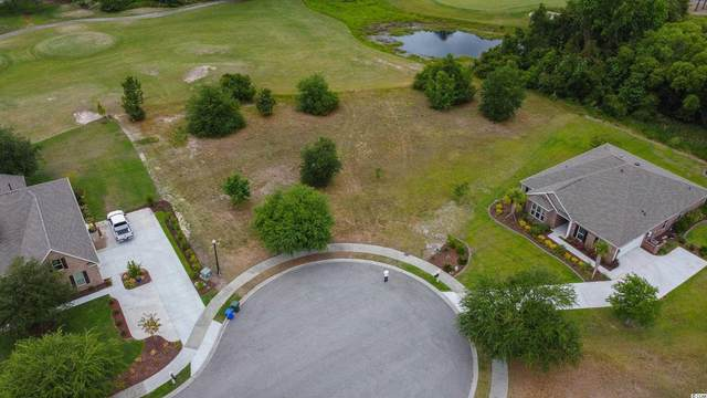 1004 Whooping Crane Dr., Conway, SC 29526 (MLS #2111286) :: The Litchfield Company