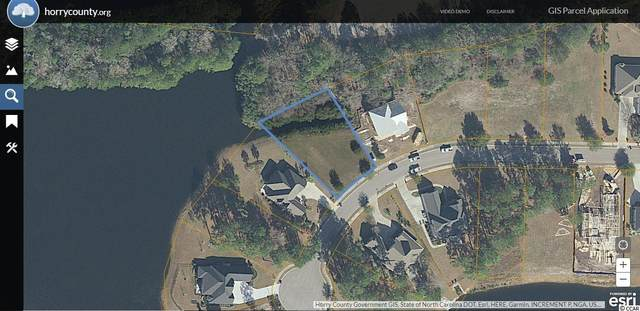 1028 Muscovy Pl., Conway, SC 29526 (MLS #2111359) :: The Litchfield Company