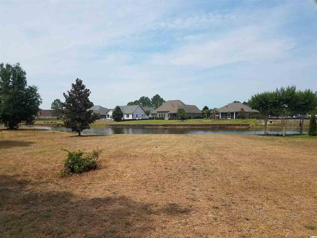 1465 Whooping Crane Dr., Conway, SC 29526 (MLS #2111722) :: Homeland Realty Group