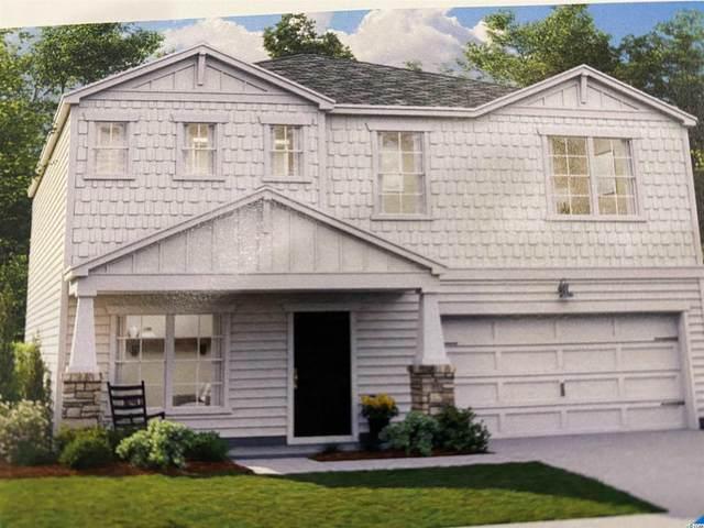 164 Marsh Deer Place, Surfside Beach, SC 29575 (MLS #2111816) :: Jerry Pinkas Real Estate Experts, Inc