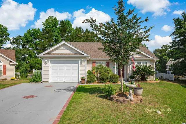 718 Lilly Naz Ln., Myrtle Beach, SC 29588 (MLS #2111877) :: The Hoffman Group