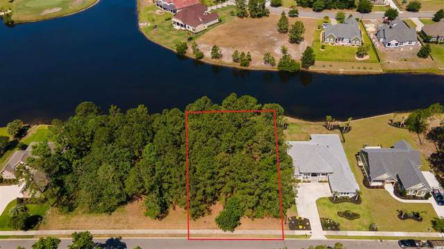 1453 Whooping Crane Dr., Conway, SC 29526 (MLS #2111982) :: Homeland Realty Group