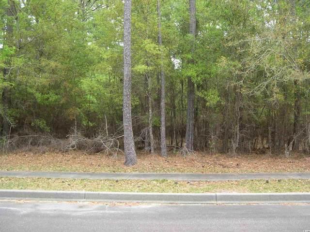 157 Bridge View Rd., Georgetown, SC 29440 (MLS #2112192) :: Homeland Realty Group