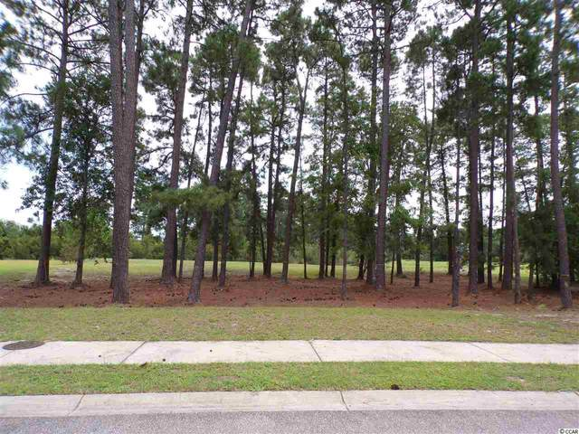 1008 Glossy Ibis Dr., Conway, SC 29526 (MLS #2112441) :: Welcome Home Realty