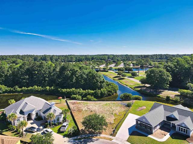 1132 Glossy Ibis Dr., Conway, SC 29526 (MLS #2112547) :: Jerry Pinkas Real Estate Experts, Inc